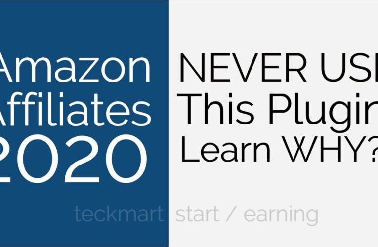 Never Use This Plugin for Amazon Affiliates Website 2020 Hindi