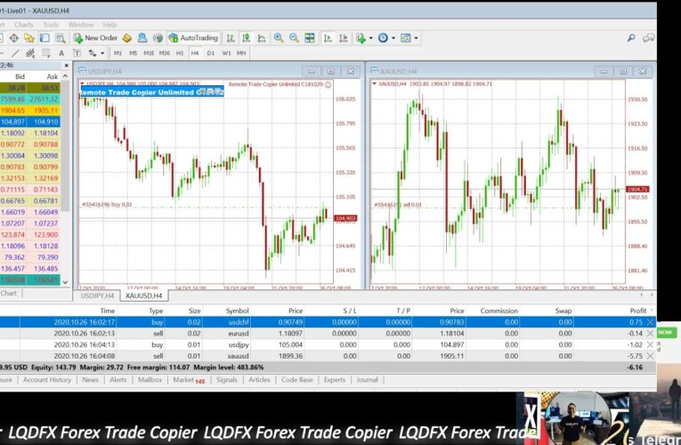KouLeeFX LQDFX Free Trade Copier for LQDFX Affiliates #LQDFX