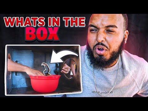AFFILIATES WHATS IN THE BOX